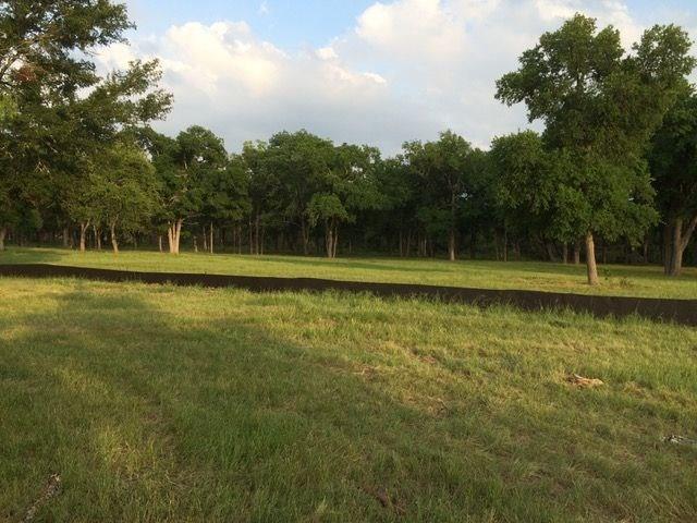 736 Buffalo Trl, Liberty Hill, TX 78642 (#4262781) :: The Heyl Group at Keller Williams