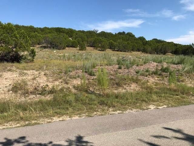 3301 A Hamilton Ave, Lago Vista, TX 78645 (#4271925) :: Front Real Estate Co.