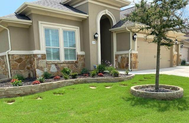 3345 Bianco Ter, Round Rock, TX 78665 (#4278462) :: The Summers Group