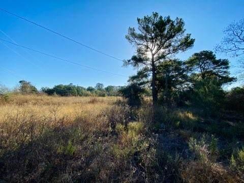 301 Zimmerman Ave, Bastrop, TX 78602 (#4416937) :: Ben Kinney Real Estate Team
