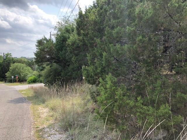 4200 Outpost Trce, Lago Vista, TX 78645 (#4654956) :: Watters International