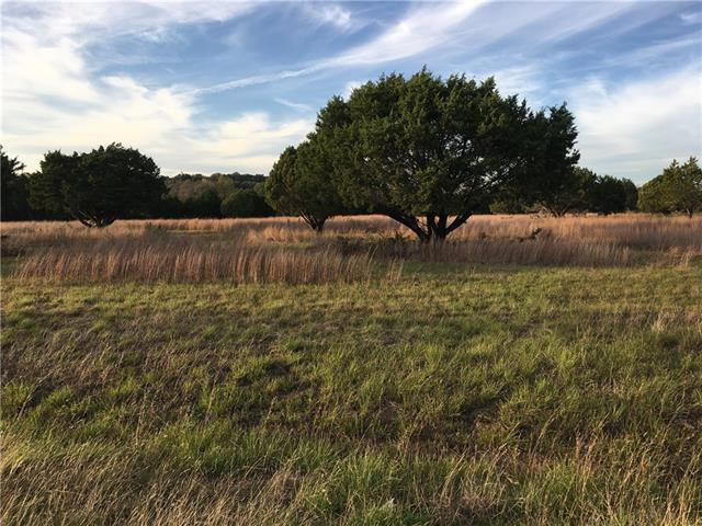 Lot 9 Sweet Summer Dr, Leander, TX 78641 (#4699995) :: Watters International