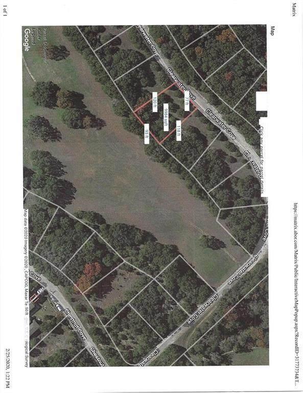8201 Clearwater Cv, Lago Vista, TX 78645 (#4745297) :: Papasan Real Estate Team @ Keller Williams Realty