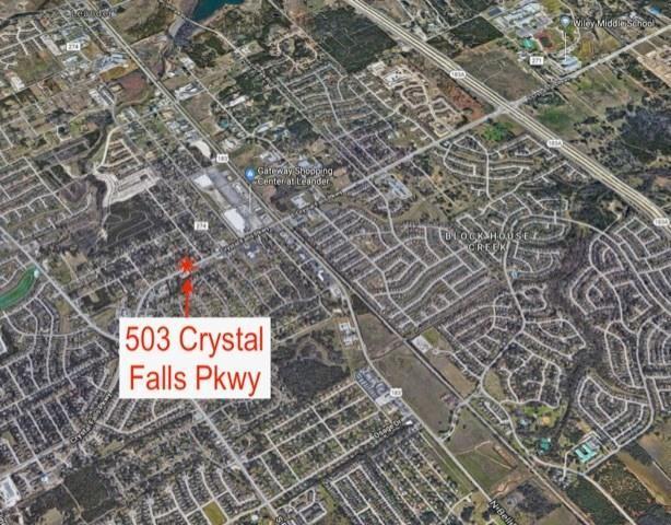 503 Crystal Falls Pkwy, Leander, TX 78641 (#4754113) :: Papasan Real Estate Team @ Keller Williams Realty