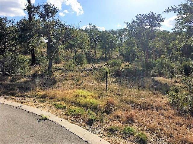 Lot 31 Kadens Blf, Round Mountain, TX 78663 (#4832482) :: The Heyl Group at Keller Williams