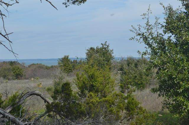 Lot 66 Pristine Pass, Buchanan Dam, TX 78609 (#4875272) :: The Summers Group