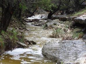 110 River Bend Rd, Wimberley, TX 78676 (#4919659) :: Ana Luxury Homes