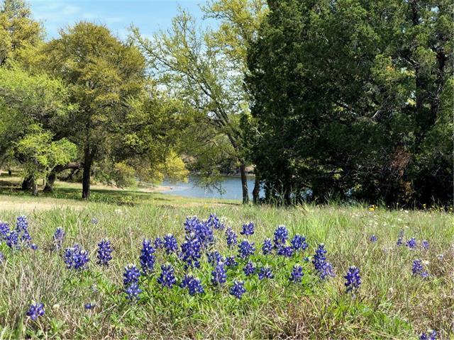 125 Quiet Oak Cv, Liberty Hill, TX 78642 (#5079224) :: Watters International