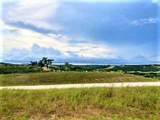 Lot 28 Scenic Hills Ct, Blanco, TX 78606 (#5120547) :: Papasan Real Estate Team @ Keller Williams Realty