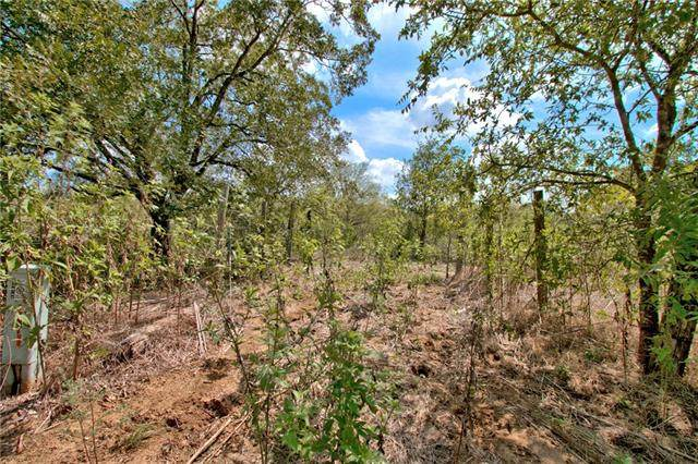 15870 Saint Hedwig Rd, Out of State, TX 78152 (#5132895) :: Ben Kinney Real Estate Team