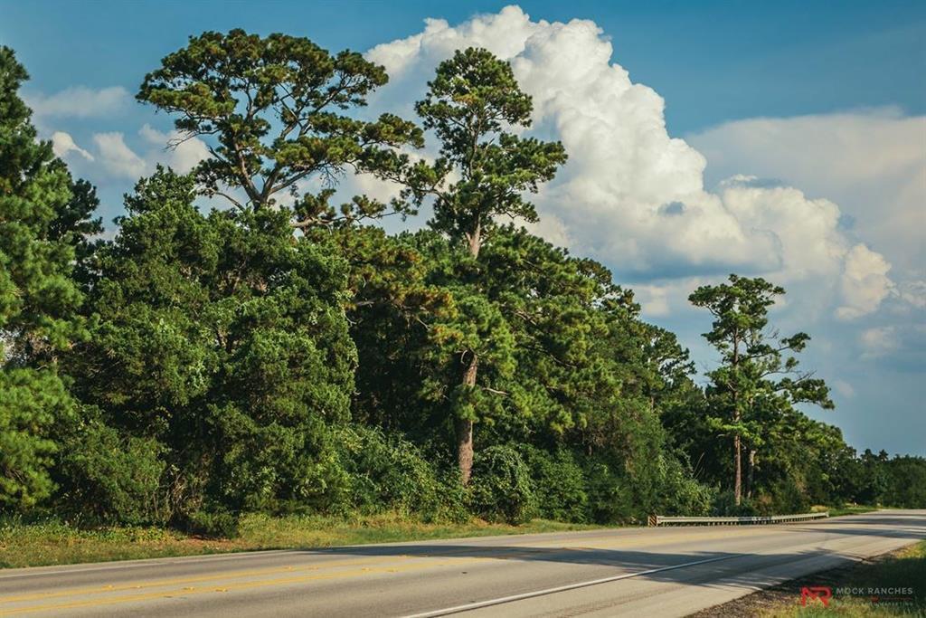 1 Highway 77 - Photo 1