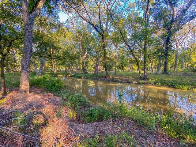 7244 State Hwy 36 S, Caldwell, TX 77836 (#5164670) :: Lauren McCoy with David Brodsky Properties