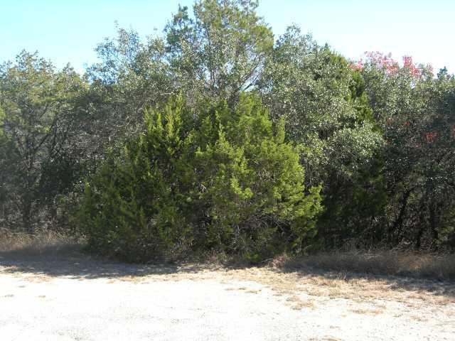 21101 Needles Cv, Lago Vista, TX 78645 (#5164945) :: The ZinaSells Group