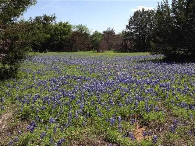 Lot 5-A Ridge Harbor Dr, Spicewood, TX 78669 (#5175409) :: Papasan Real Estate Team @ Keller Williams Realty