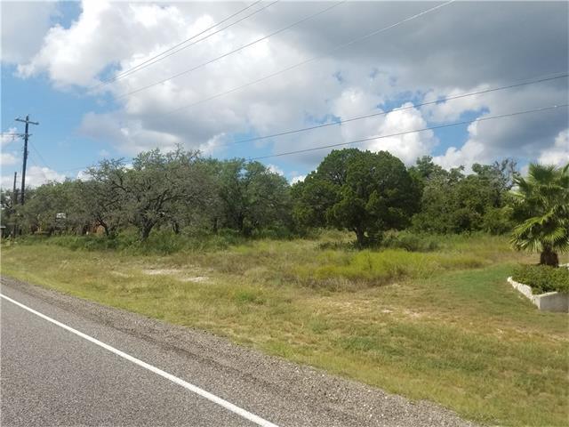 11101 Oak St, Lago Vista, TX 78645 (#5210016) :: Forte Properties