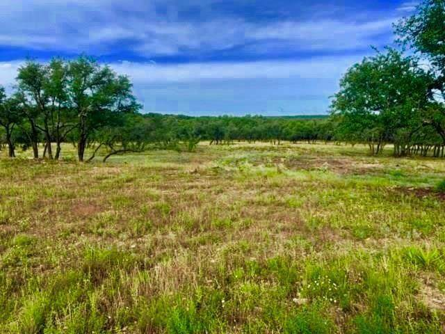 22503 Hazy Hollow Cv, Spicewood, TX 78669 (#5217917) :: Watters International