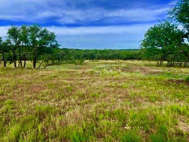 22501 Hazy Hollow Cv, Spicewood, TX 78669 (#5227833) :: Watters International