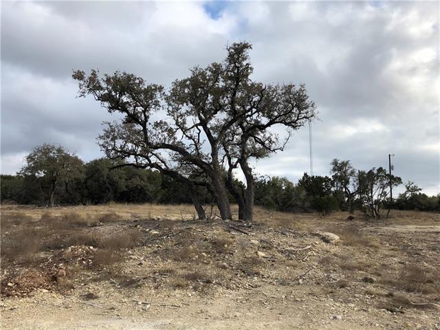 100 Taylor Creek Way, Liberty Hill, TX 78642 (#5250323) :: Forte Properties
