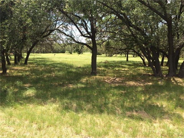 2201 Ballinger Dr, Spicewood, TX 78669 (#5265217) :: Forte Properties