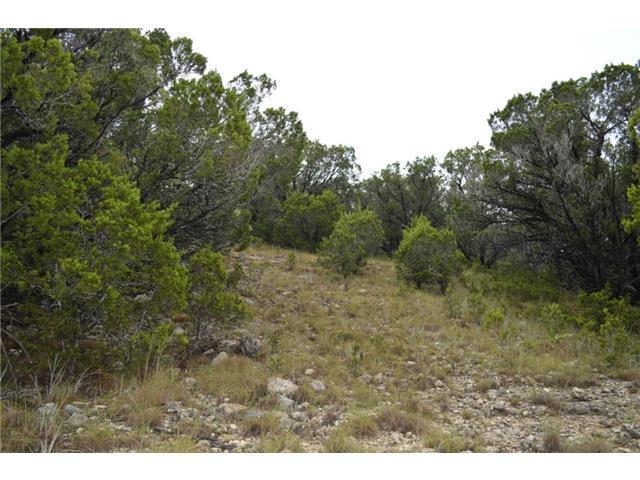 4601 Outpost Trce, Lago Vista, TX 78645 (#5277041) :: Forte Properties