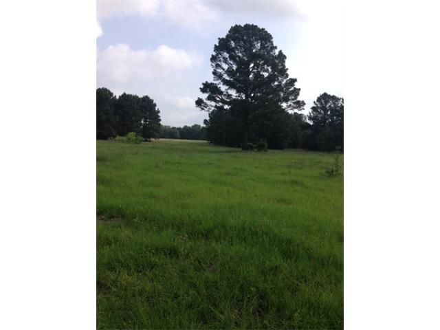 TBD Antioch 39.5 +/_Acres Rd, Paige, TX 78659 (#5294358) :: The ZinaSells Group