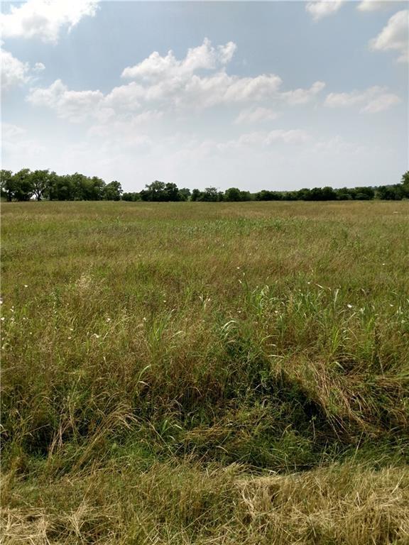 000 County Road 423, Taylor, TX 76574 (#5307451) :: The Heyl Group at Keller Williams