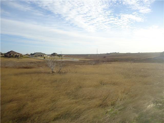 100 Comanche Cir, Hutto, TX 78634 (#5313451) :: RE/MAX Capital City