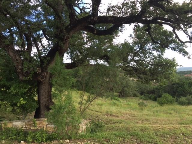 116 Brandon Way, Austin, TX 78733 (#5326601) :: Forte Properties