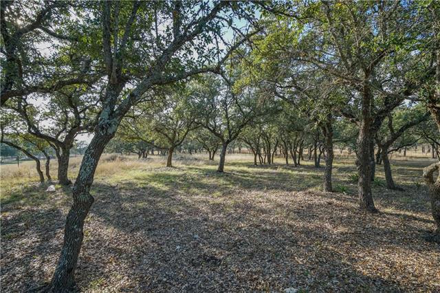 525 Oak Point Ct, Liberty Hill, TX 78642 (#5328313) :: Forte Properties