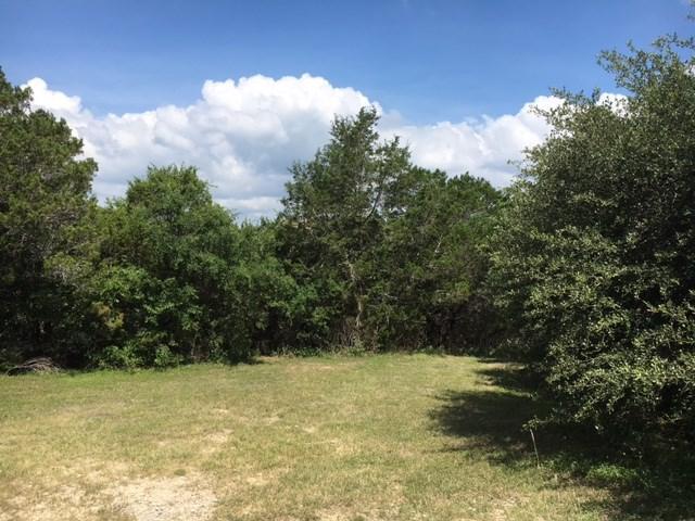 1608 Westward Ho Trl, Austin, TX 78734 (#5418542) :: Forte Properties