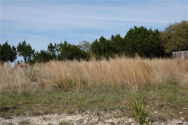 20906 Ridgeview Rd, Lago Vista, TX 78645 (#5438323) :: Forte Properties