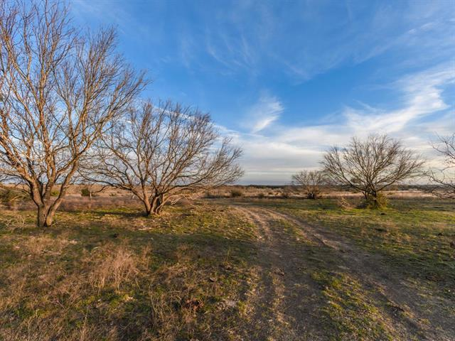 5199 County Rd 204, Liberty Hill, TX 78642 (#5516552) :: Forte Properties