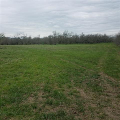 101 acres Hwy 21, Cedar Creek, TX 78612 (#5537397) :: Austin International Group LLC