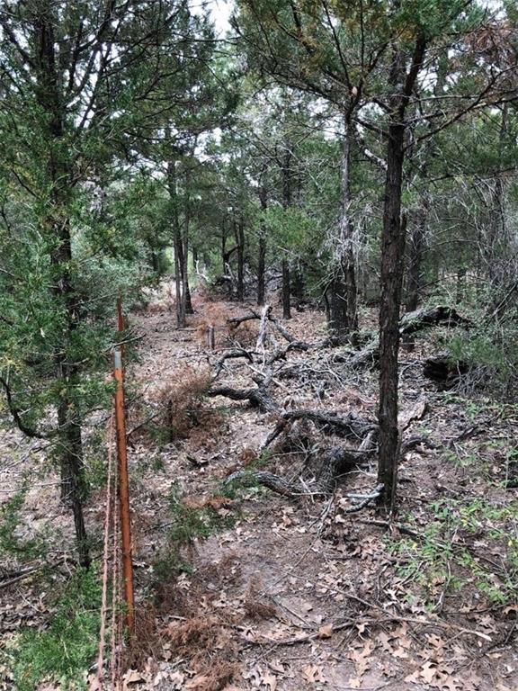 Lot 5 Lumber Jack Ct, Bastrop, TX 78602 (#5538533) :: The Heyl Group at Keller Williams