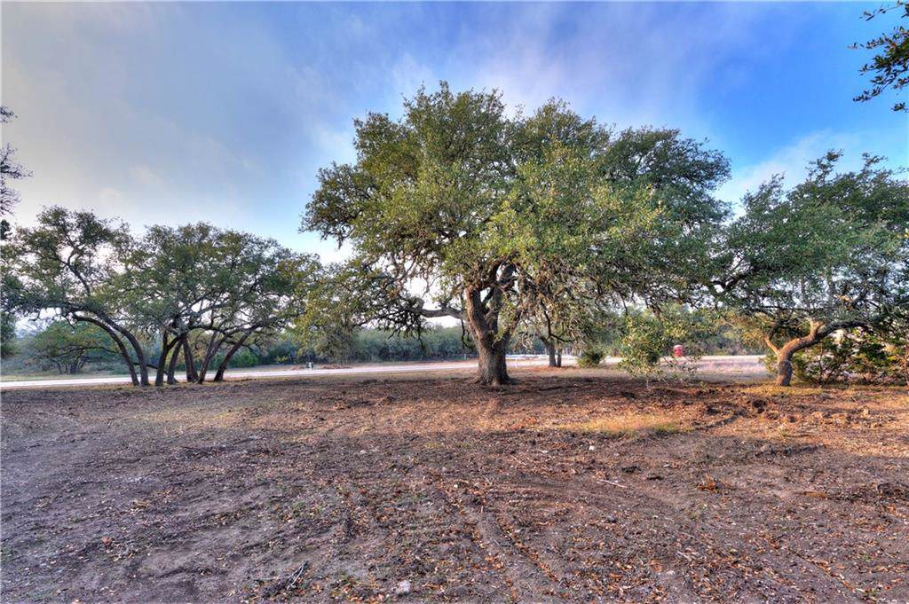 1700 Driftwood Valley Trail - Photo 1