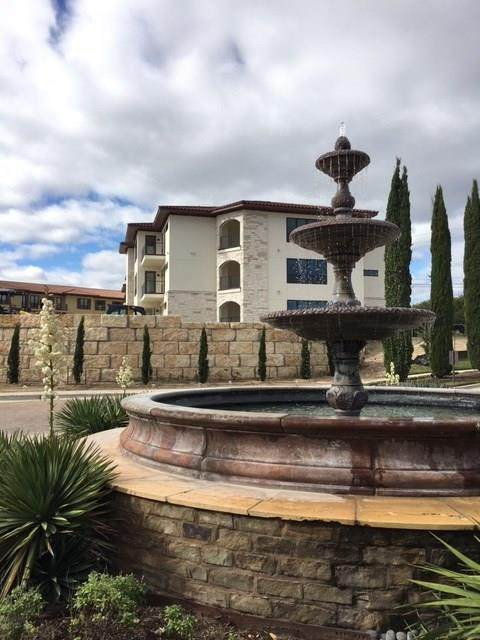 102 Bella Toscana Ave #1207, Lakeway, TX 78734 (#5612065) :: 12 Points Group