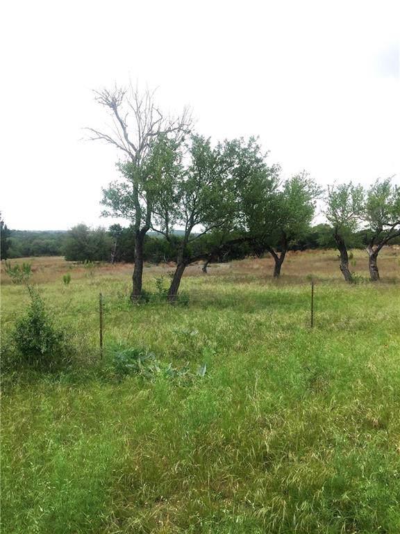 2225 W Fitzhugh Rd, Dripping Springs, TX 78620 (#5625476) :: RE/MAX Capital City
