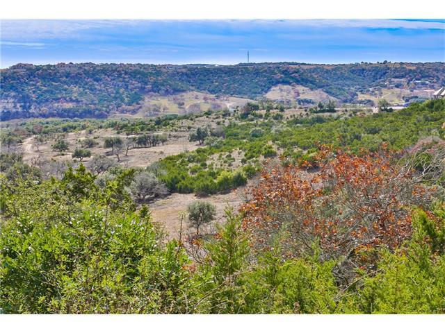 123R Hannah Ln, Other, TX 78006 (#5680778) :: Forte Properties