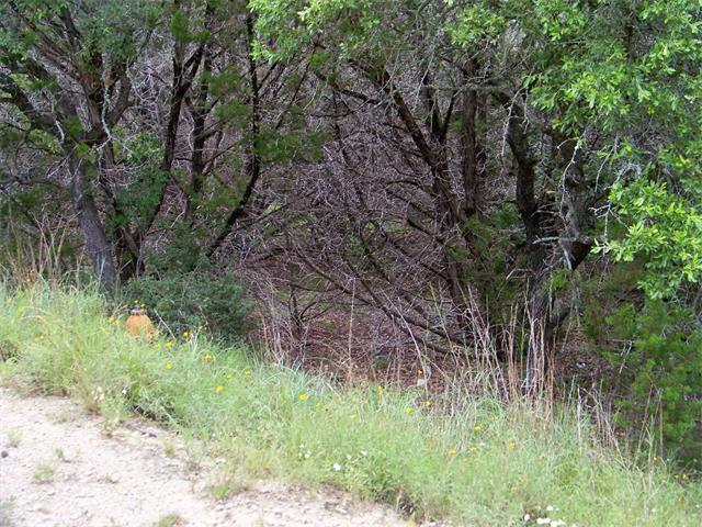 6801 Bar K Ranch Rd, Lago Vista, TX 78645 (#5786512) :: Forte Properties