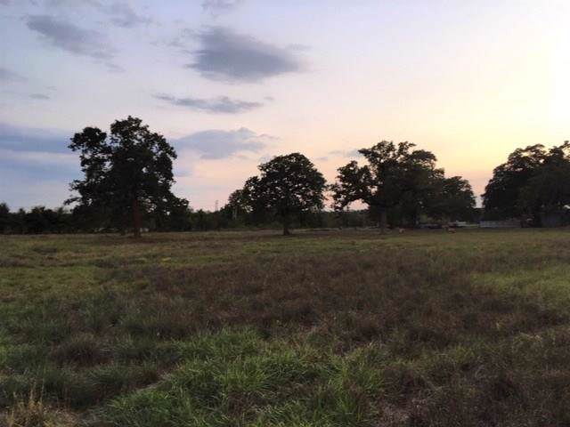 TBD St Hwy 159, Rutersville, TX 78945 (#5811052) :: The Perry Henderson Group at Berkshire Hathaway Texas Realty