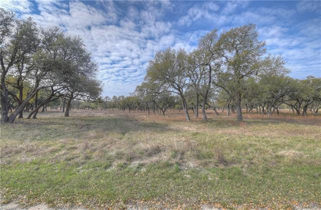 0 Landing Ln, Blanco, TX 78606 (#5834042) :: Papasan Real Estate Team @ Keller Williams Realty