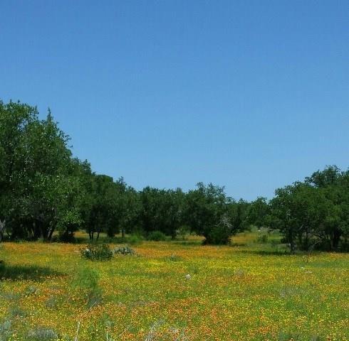 103 Oak Meadow Trl, Spicewood, TX 78669 (#5864208) :: Douglas Residential