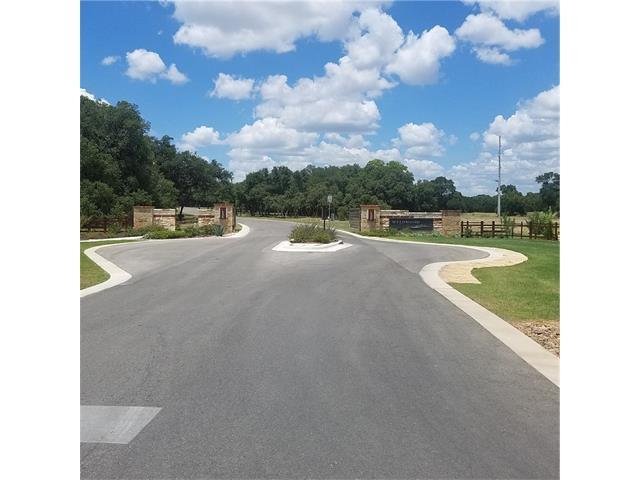 380 Waters Edge Cv, Dripping Springs, TX 78620 (#5868512) :: Forte Properties