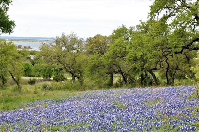 Lot 17 Sierra Blf, Buchanan Dam, TX 78609 (#5925450) :: Realty Executives - Town & Country
