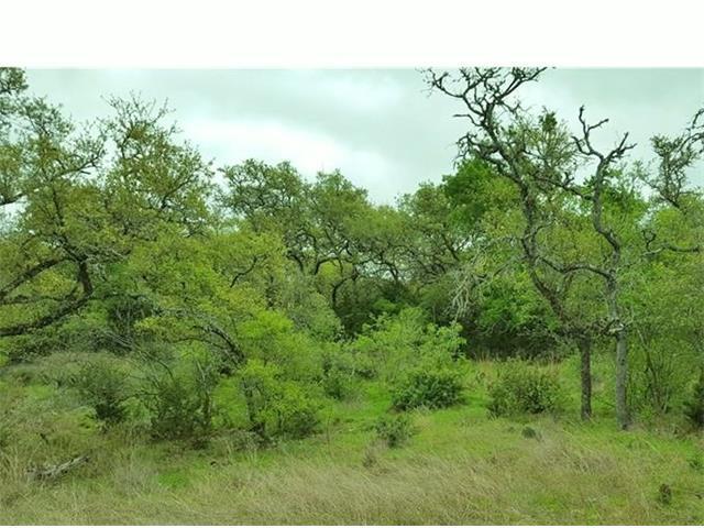 1620 Blush Ct, New Braunfels, TX 78132 (#6011218) :: Forte Properties