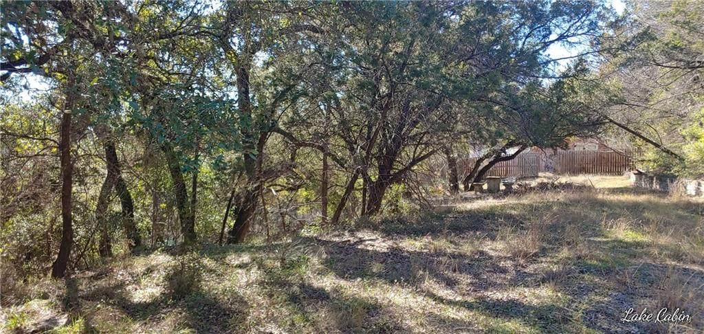 TBD Turkey Tree Rd - Photo 1