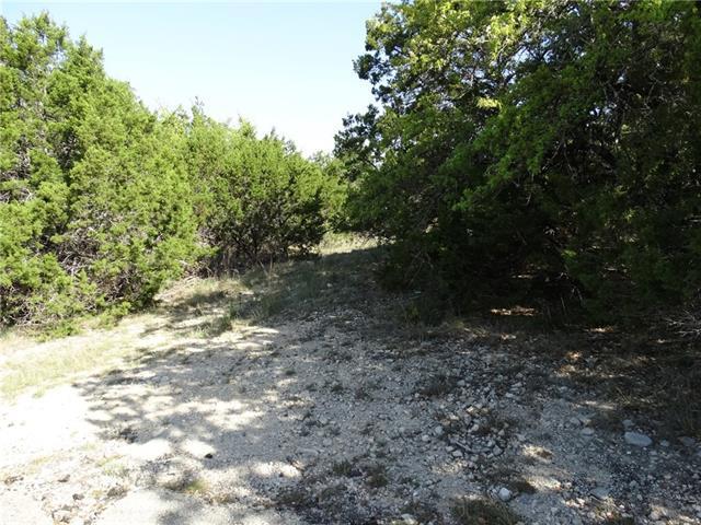 21502 Penn Cv, Lago Vista, TX 78645 (#6114453) :: Forte Properties