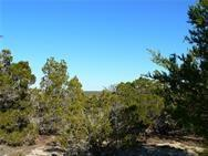 115 Timberline Rd, Wimberley, TX 78676 (#6123532) :: Elite Texas Properties