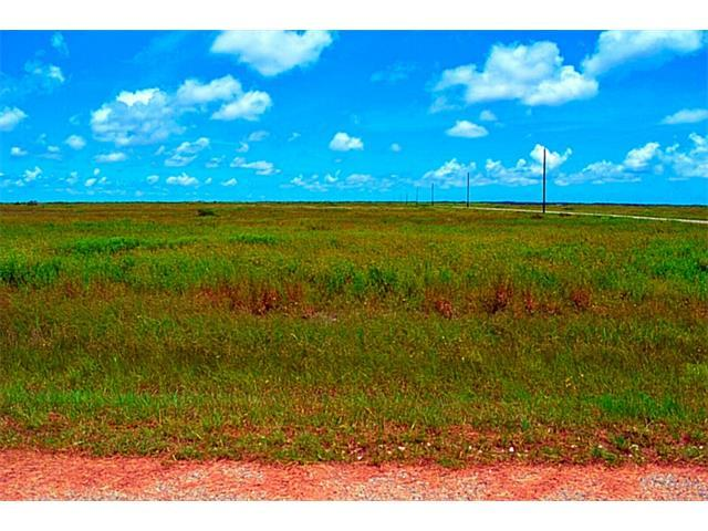 205 Sunrise Dr, Other, TX 78382 (#6189447) :: Forte Properties