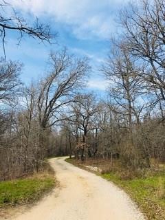 128 Holman Ln, Cedar Creek, TX 78612 (#6265938) :: Kevin White Group